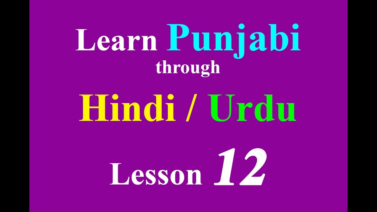 Learn Punjabi through Hindi - Common Punjabi language sentences Lesson 12
