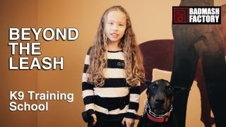 Badmash Factory Productions | Beyond The Leash K9 Training | Commercial Video | 5 Mins Version