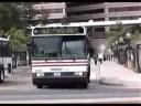 Washington DC Area Buses 2001