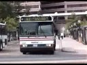 Washington DC Area Buses 2001