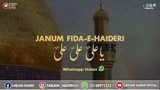 Saqlain Haider Official channel , Saqlain Haider Official