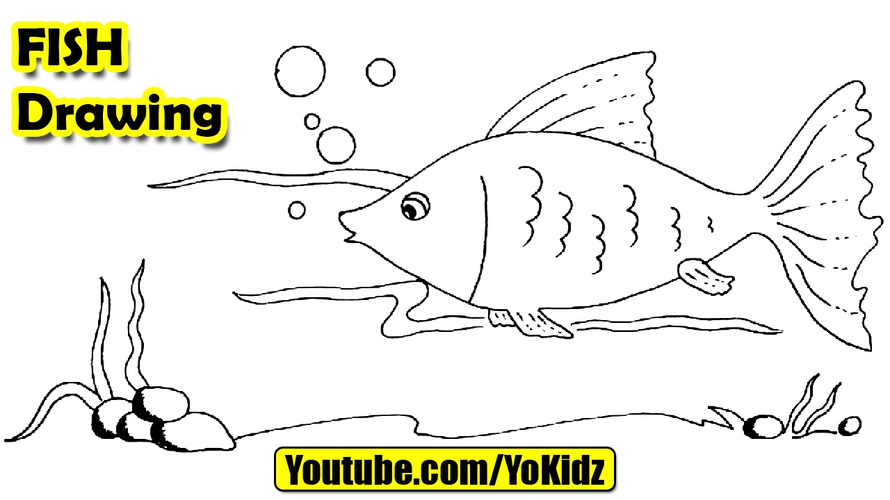 How To Draw A Fish For Kids