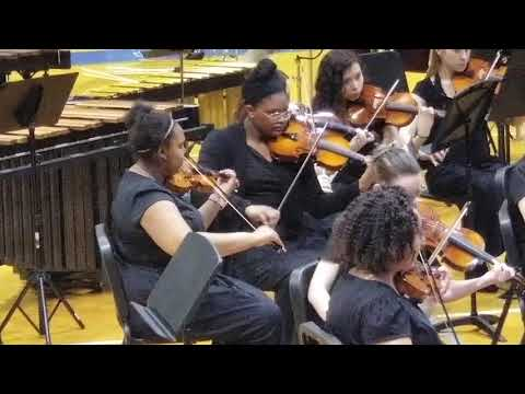 Nashville School of the Arts Pre-CPA Chamber Orchestra