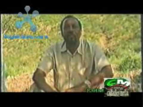 Ahmed M. Mahamoud Silanyo