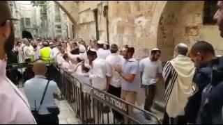 بالفيديو: مستوطنون يرقصون عند أبواب المسجد الأقصى