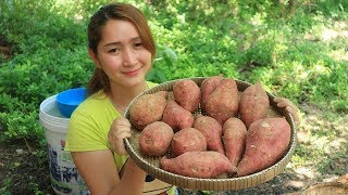 Yummy Sweet Potato Cooking With Palm Sugar - Sweet Potato dessert - Cooking With Sros