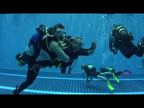 Diveworld Videos | January Club Night