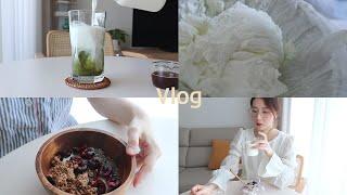 다이어트Vlog) 우유와 함께하는 건강하고 맛있는 다이어트 식단 (다이어트 녹차 라떼, 홈메이드 그릭 요거트, 요거트볼, 우유 오트밀)