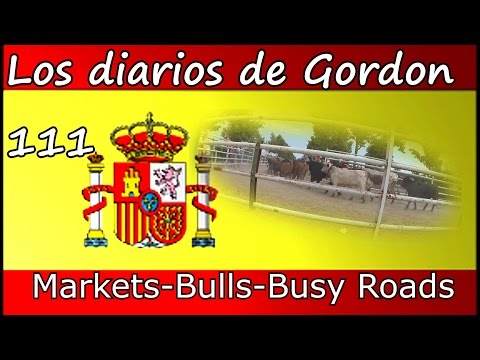 Gordon's Diaries   111  Markets, Bulls and Busy roads   LightSpeed Spanish