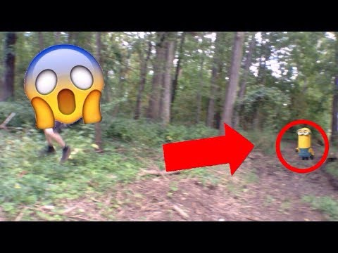 Kevin The Minion SPOTTED IN REAL LIFE! *You Won't Believe This*
