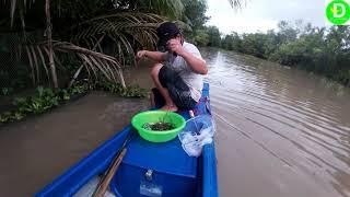 Lần đầu thả câu dưới sông  bằng mồi tép ủ l  Fishing VIETNAM