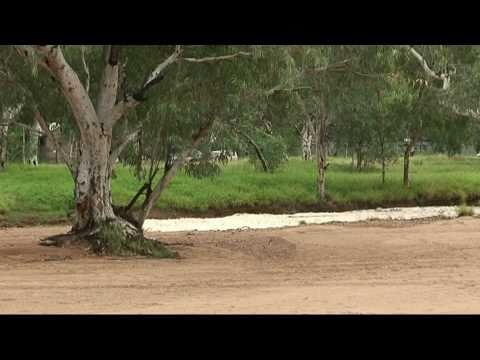The Todd River in flood