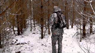Tropienie wilka (trailing the wolf)