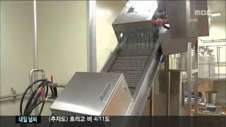 당근 가공처리난 홍수현기자