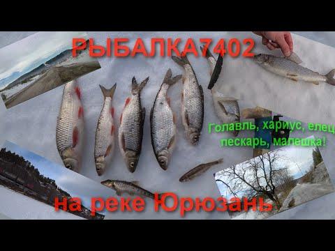 Голавль, елец, хариус, малешка! Рыбалка на реке Юрюзань!