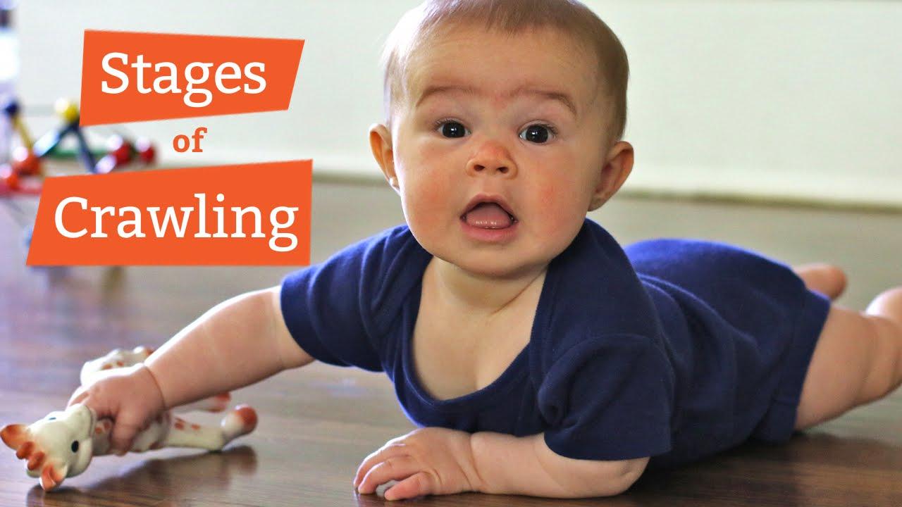 baby crawling development novice