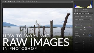 How to Work with RAW Images in Photoshop