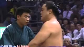 National Art of Sumo volume 7 : 1993 -- 1996 http://www.dosukoi.fr.