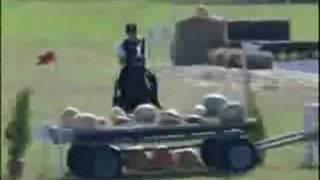 Падения в конном спорте