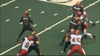 Arizona Rattlers vs Jacksonville Sharks highlights