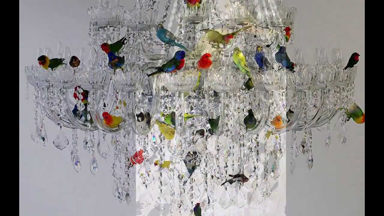 Xl bird chandelier by sebastian errazuriz youtube aloadofball Gallery