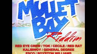 Download MULLET BAY RIDDIM MIX (2014) - GENERAL DEGREE, CECILE, TOK, RED RAT, & MORE MP3 song and Music Video
