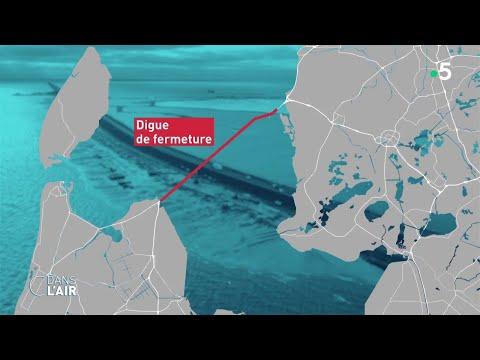 Montée des eaux aux Pays-Bas : quelles solutions ? - Reportage #cdanslair 29.08.20