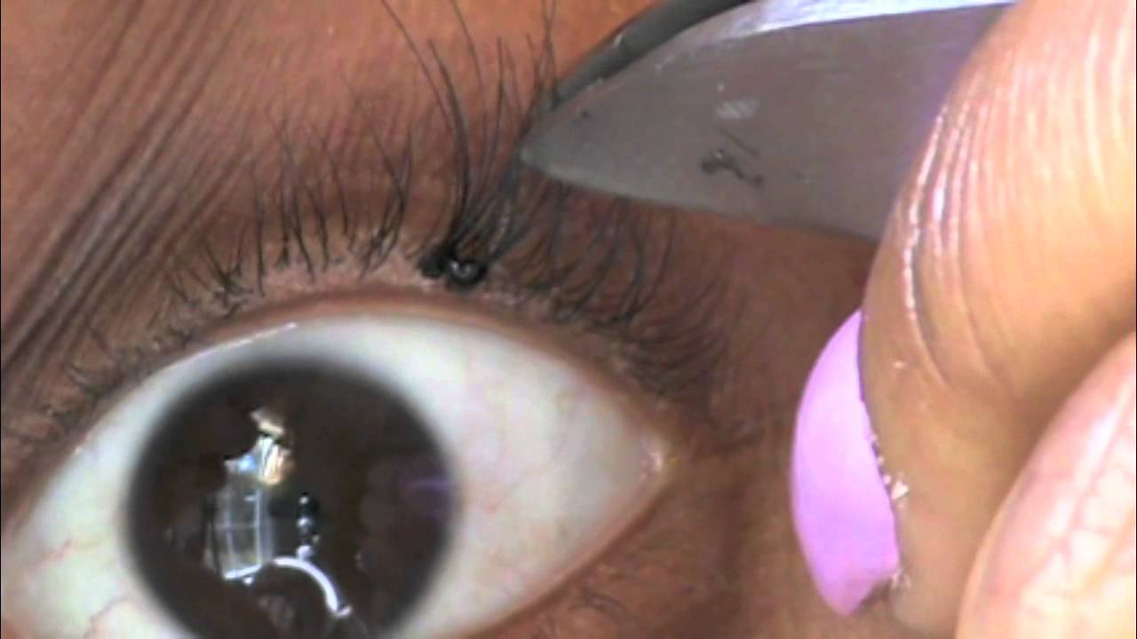 Download HOW TO APPLY INDIVIDUAL lASHES TUTORIAL