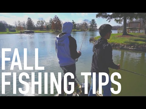 Fall Fishing Tips: 1Rod1ReelFishing & FTMW --Snapchat ...