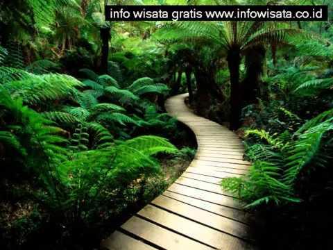 tempat-wisata-alam-di-sukabumi-jawa-barat