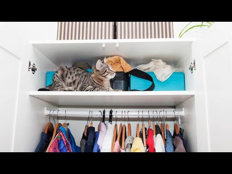 The Best Tips For Organizing Every Single Closet In Your