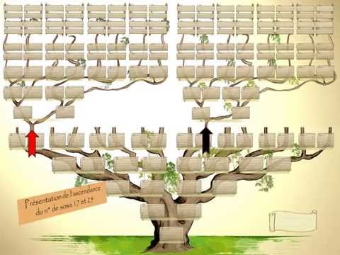 Pr sentation g n rama youtube - Fabriquer un arbre genealogique original ...