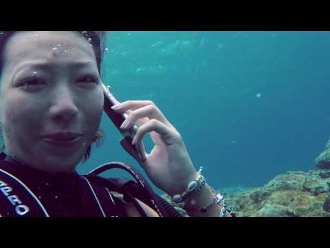 Missy :who's calling ......from Green island