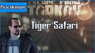 Tiger Safari - Peacekeeper Task - Escape from Tarkov Questing Guide EFT