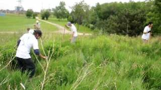 Ontario Restoration - Planting to the Tree Planters Waltz