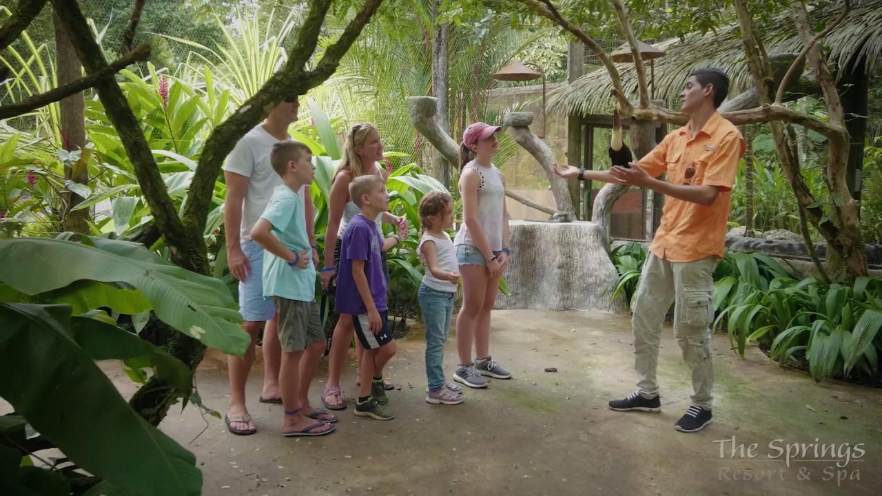 Costa Rica Hot Springs, Arenal Hot Springs at The Springs Resort