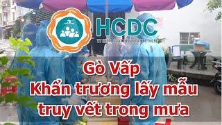 [HCDC tin ] Gò Vấp :  Khẩn trương lấy mẫu truy vết trong mưa