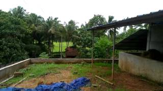 2.30 Acre Farm land near Akhikkave, Kunnamkulam,Thrissur