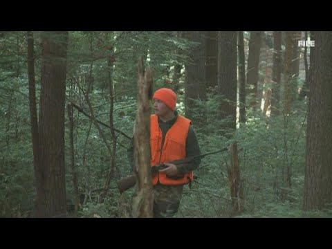 Turkey Hunting Season Opens