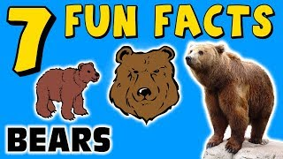 7 FUN FACTS ABOUT BEARS! BEAR FACTS FOR KIDS! Grizzly! Polar! Learning Colors! Funny! Sock Puppet!