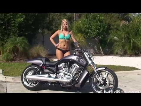 New 2014 Harley Davidson V-Rod Muscle Motorcycles for Sale - Ocala, FL