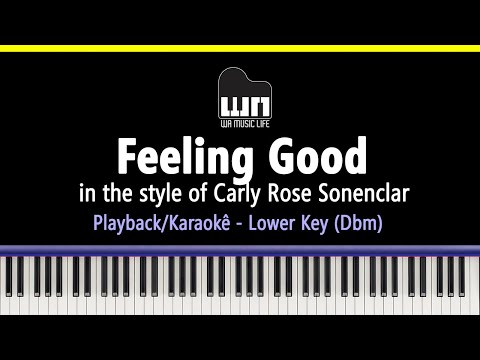 Feeling Good (Carly Rose Sonenclar - Lower Key) - Piano Playback for Cover / Karaoke