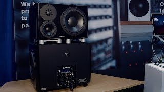 Dynaudio 18S and LYD 48 Combo System