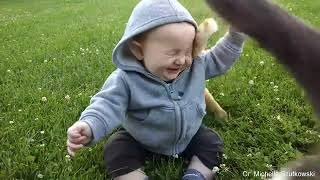 Funny cats🐈 and babies👶 playing