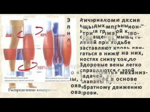 Мазь Вишневского: инструкция по применению, цена, отзывы