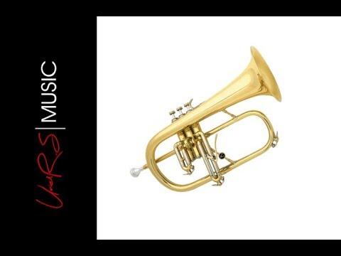 Baixar Flugelhorn Musical Instrument - Download Flugelhorn Musical
