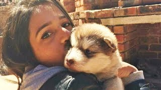 Woman Adopts A Tiny Dog But Is Stunned At What It Grows Up To Be