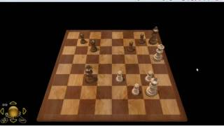 ChessCentral: How to Play Chess 12 - Draw