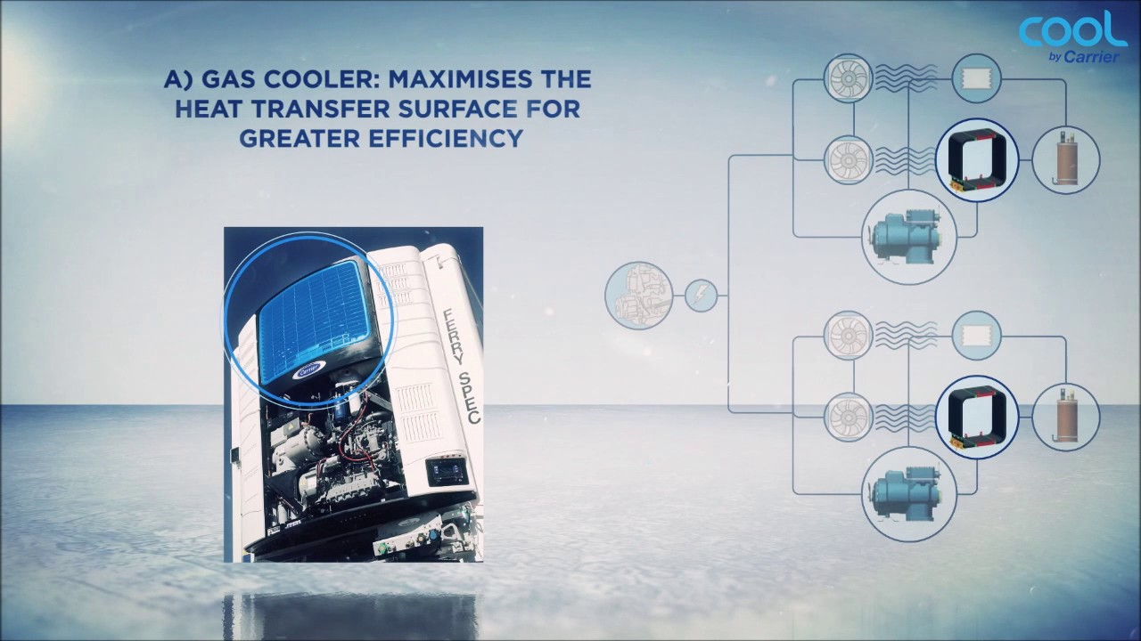 Carrier Transicold – The Cool Experience