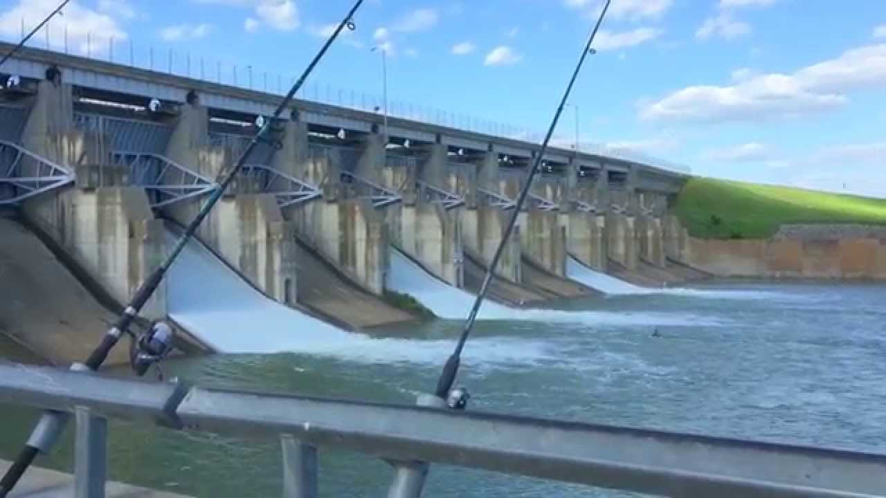 Fishing at lavon lake dam youtube for Lake lavon fishing report
